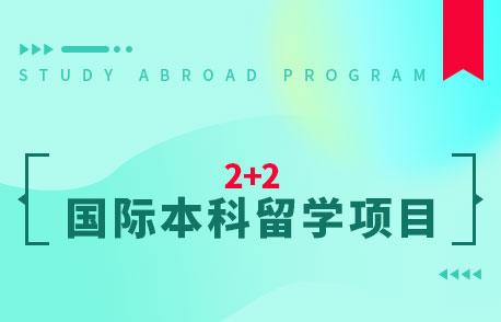 深圳大学2+2国际本科留学项目